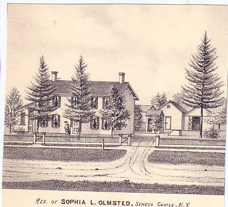 Sophia Olmsted Home